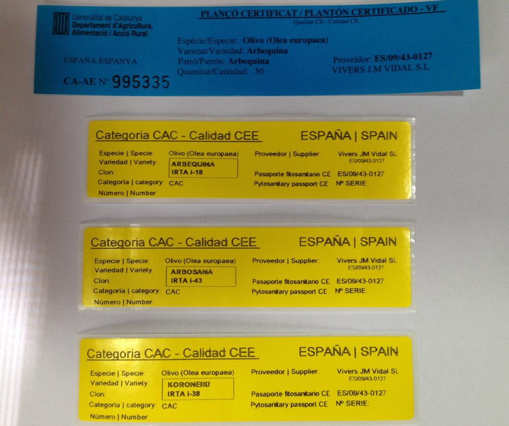 Quality And Certification Vivers Jm Vidal